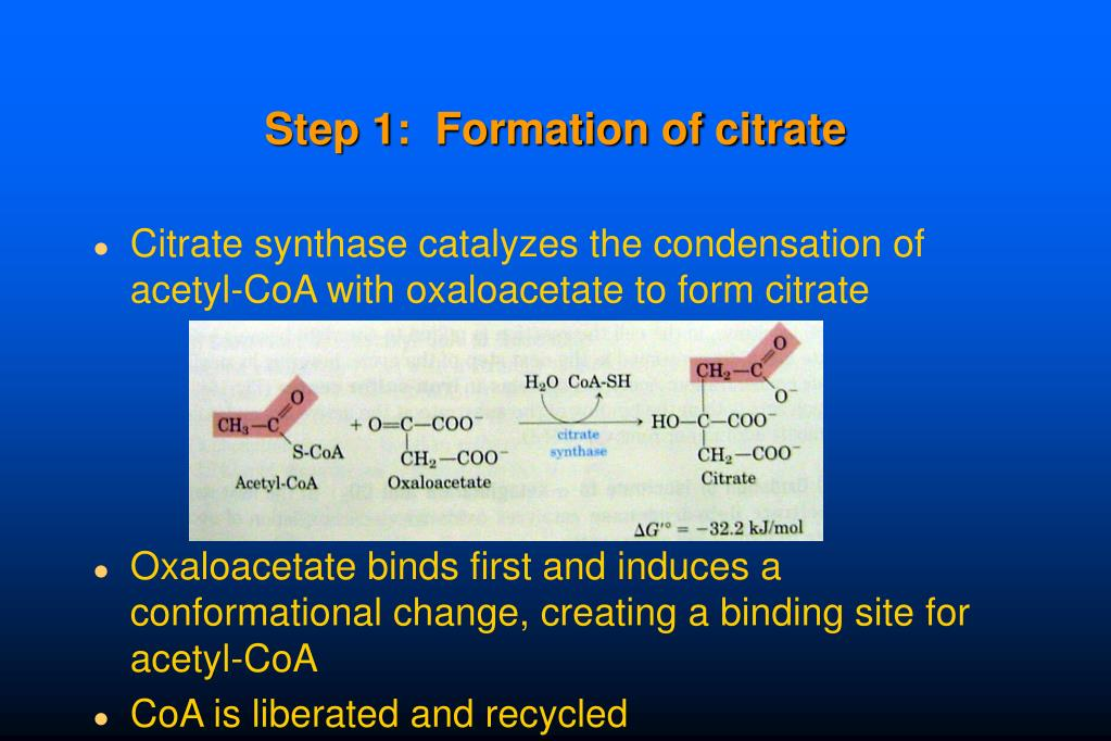 Step 1:  Formation of citrate