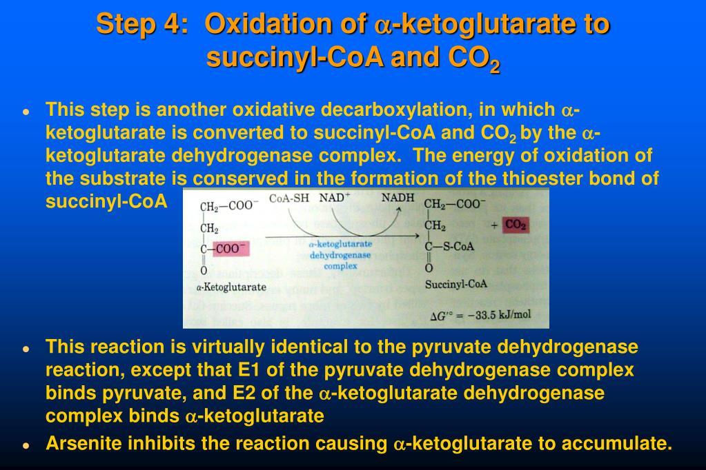 Step 4:  Oxidation of