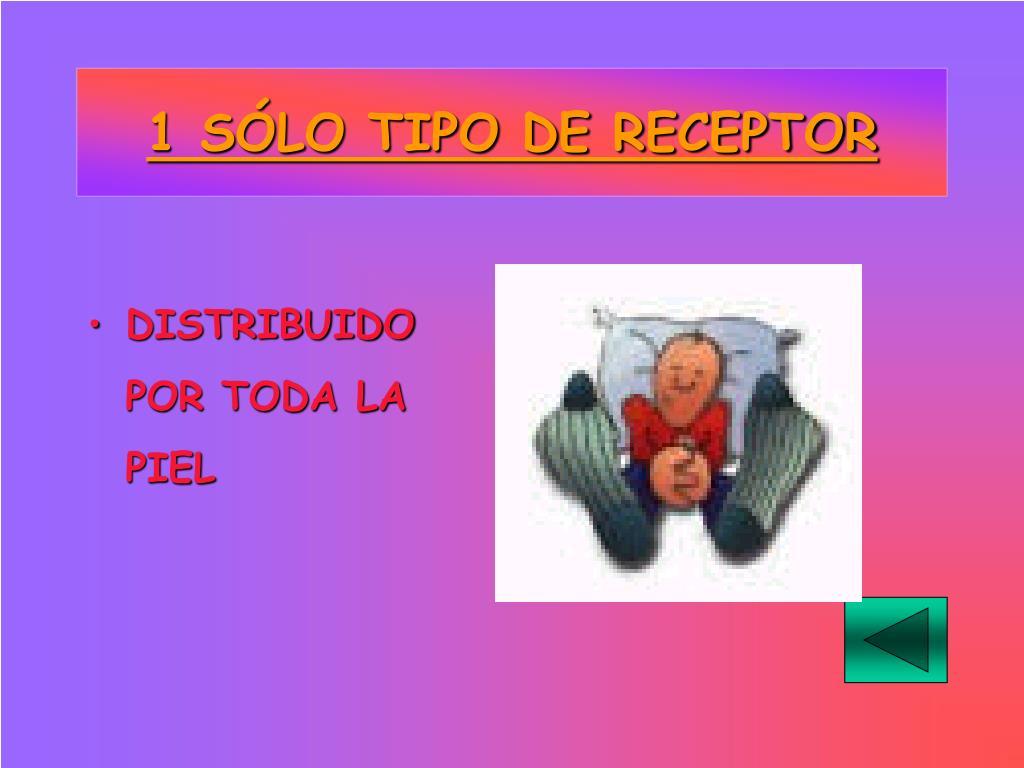 1 SÓLO TIPO DE RECEPTOR