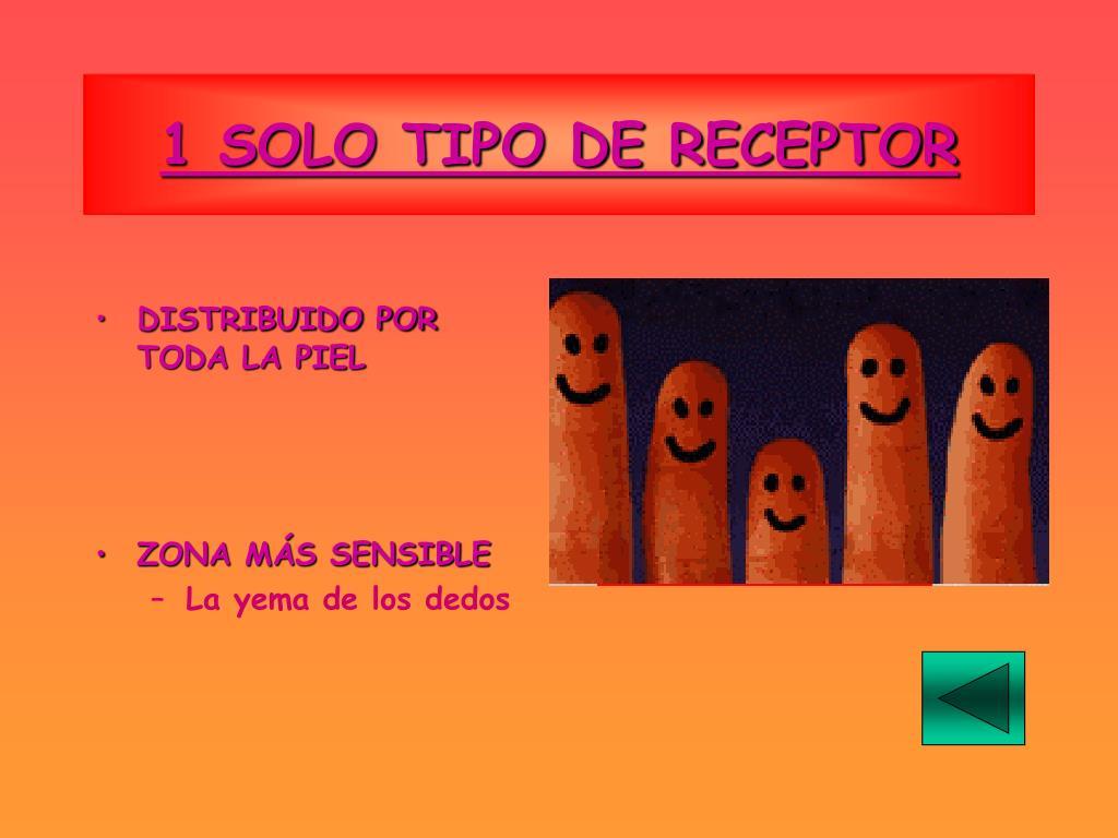 1 SOLO TIPO DE RECEPTOR