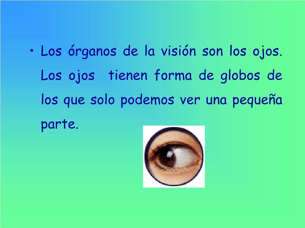 Los órganos de la visión son los ojos. Los ojos  tienen forma de globos de los que solo podemos ver una pequeña parte.
