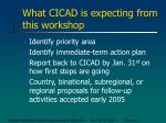what cicad is expecting from this workshop