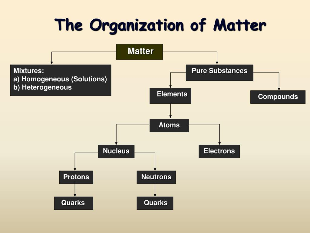 the organization of matter l.