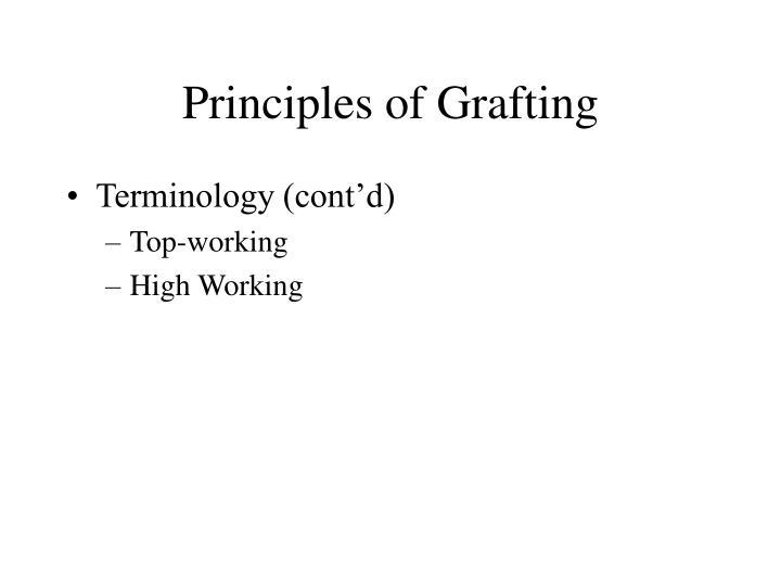 Principles of grafting2