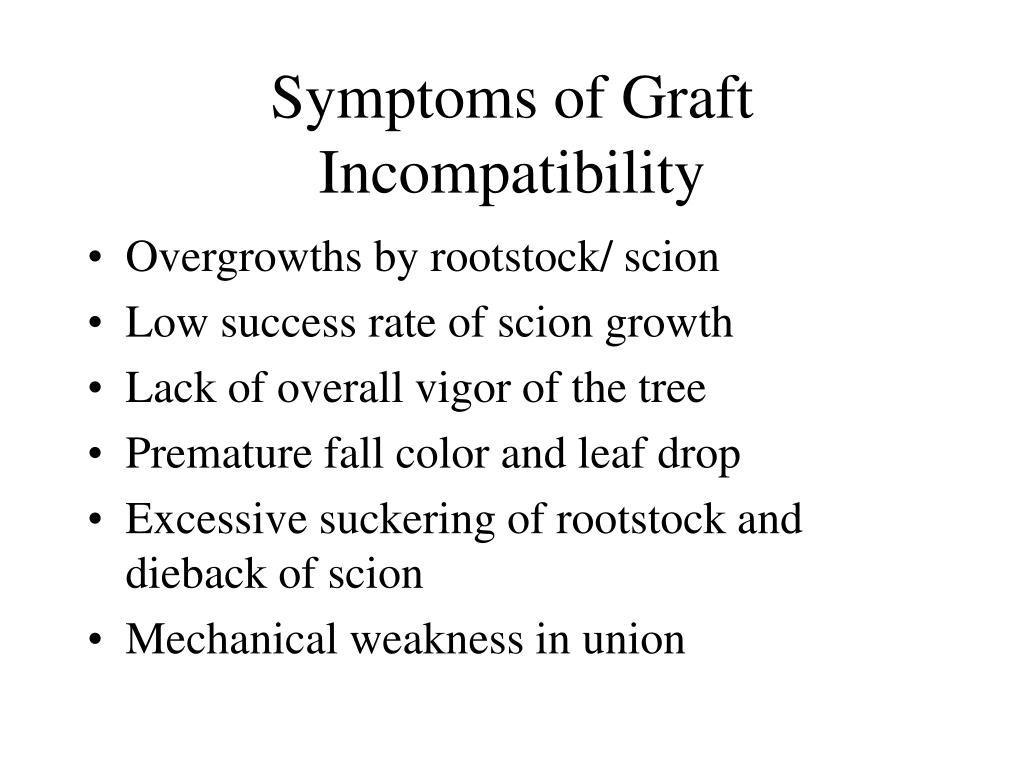 Symptoms of Graft Incompatibility