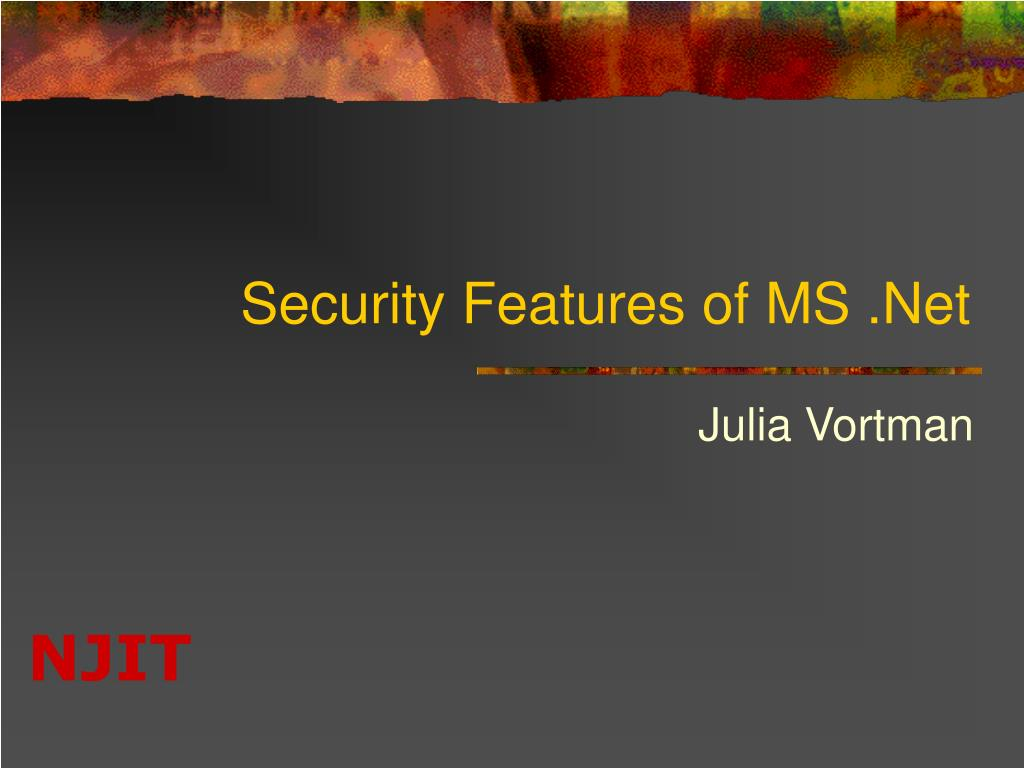 security features of ms net l.