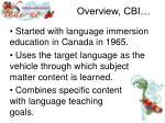 overview cbi