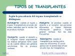 tipos de transplantes