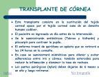 transplante de c rnea