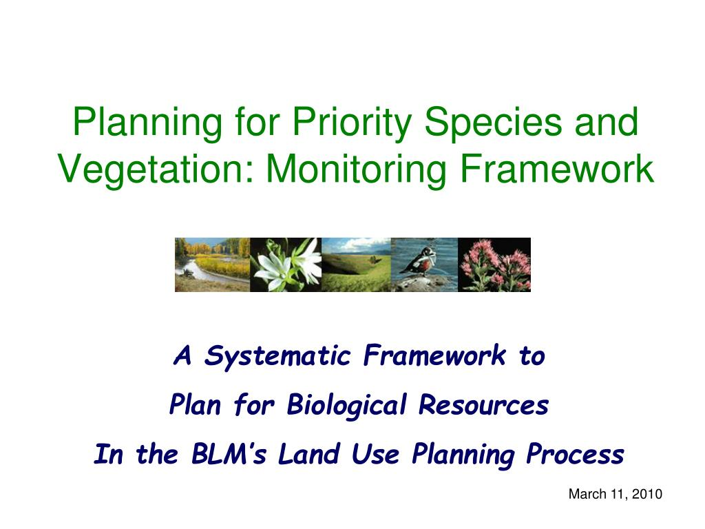 planning for priority species and vegetation monitoring framework l.