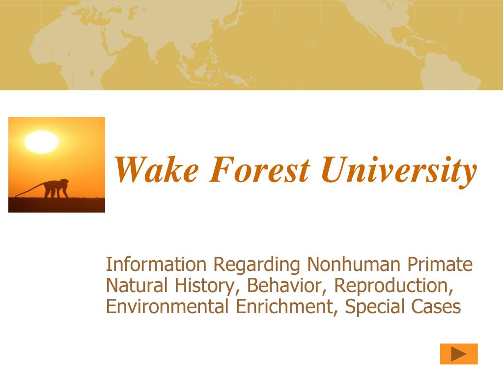 wake forest university l.