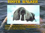 tooth walker