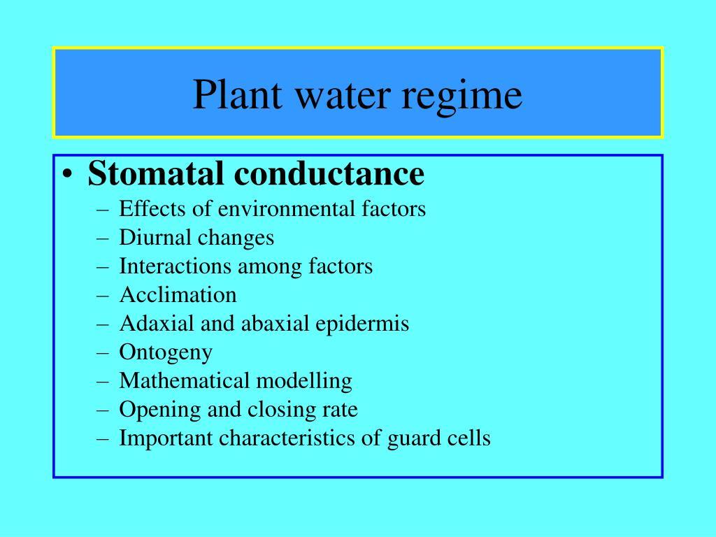 plant water regime l.