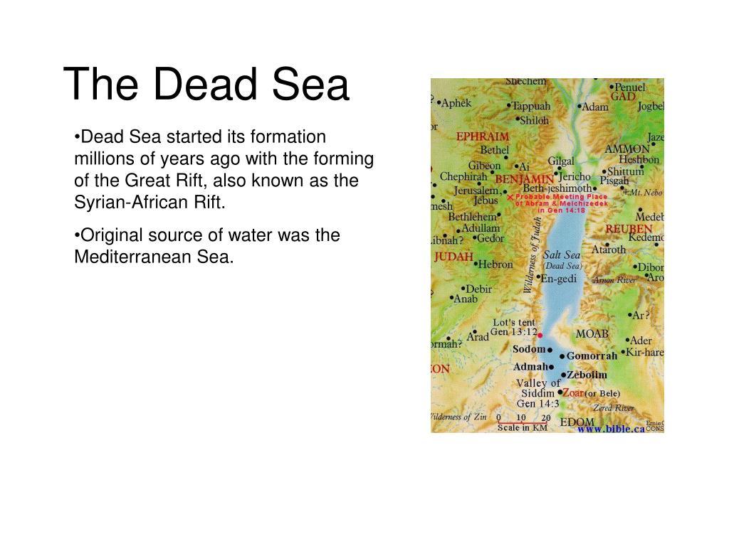 the dead sea l.
