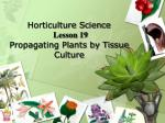 horticulture science lesson 19 propagating plants by tissue culture