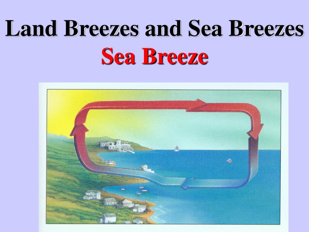 land breezes and sea breezes sea breeze l.