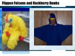 flippen falcons and hackberry hawks