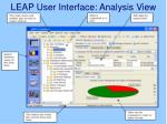 leap user interface analysis view
