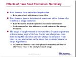 effects of haze seed formation summary