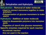 dehydration and hydrolysis