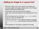 adding an image to a layout cell95