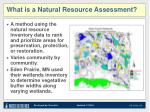what is a natural resource assessment