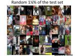 random 1 of the test set