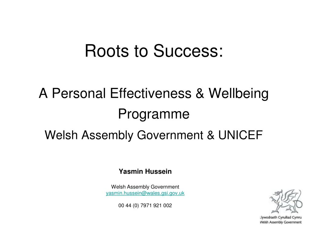 roots to success a personal effectiveness wellbeing programme welsh assembly government unicef l.
