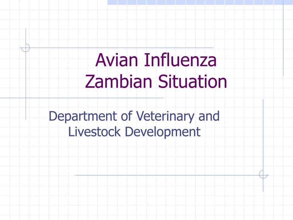 avian influenza zambian situation l.