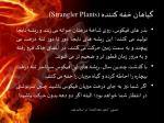 strangler plants