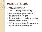 morbili virus