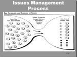issues management process4