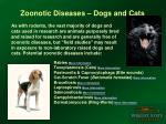 zoonotic diseases dogs and cats