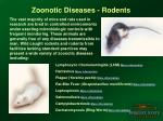 zoonotic diseases rodents