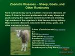 zoonotic diseases sheep goats and other ruminants