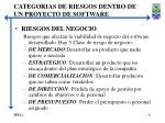 categorias de riesgos dentro de un proyecto de software3