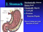 2 stomach