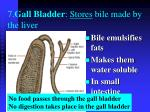 7 gall bladder stores bile made by the liver