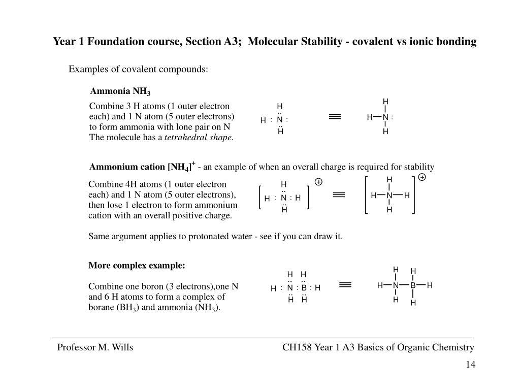 PPT - Professor M  Wills PowerPoint Presentation - ID:787324