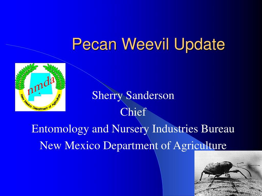pecan weevil update l.