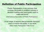 definition of public participation