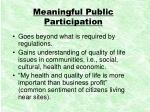 meaningful public participation
