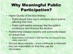 why meaningful public participation
