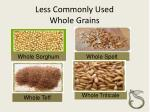 less commonly used whole grains23