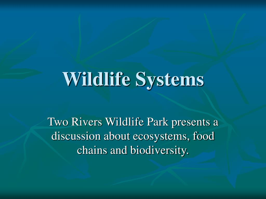 wildlife systems l.