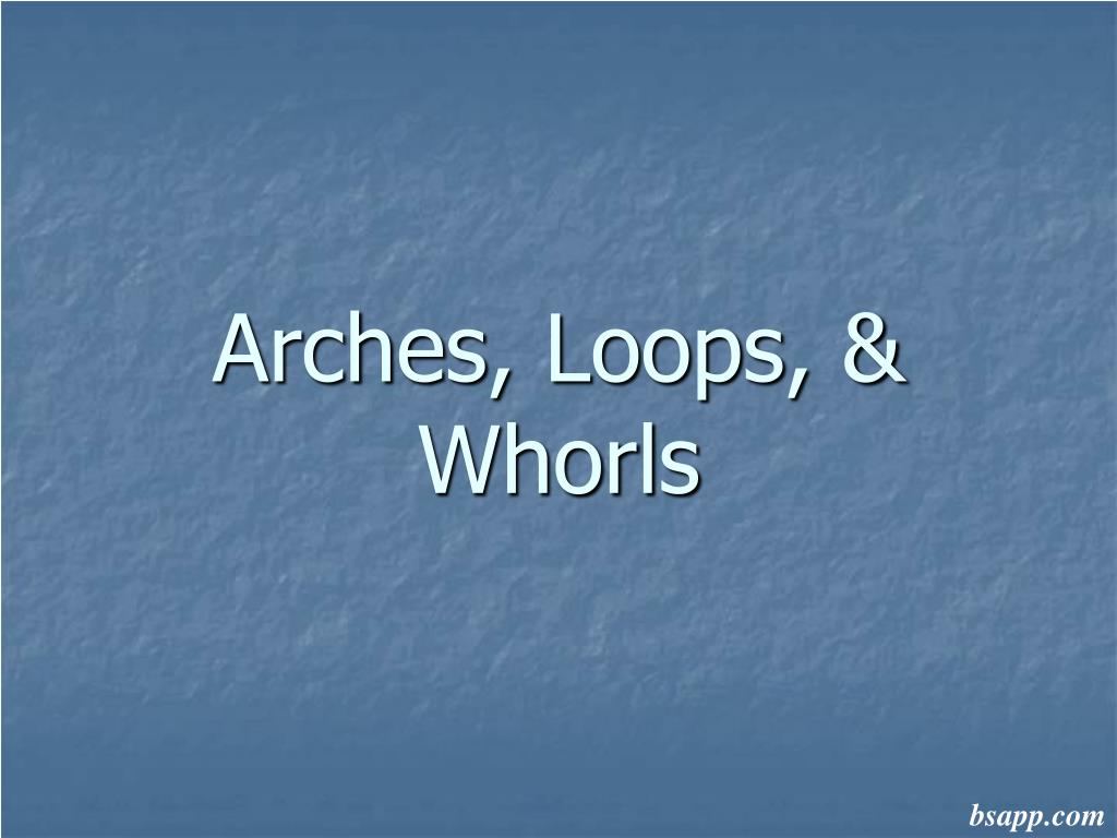 arches loops whorls l.