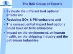 the imo group of experts