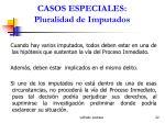 casos especiales pluralidad de imputados