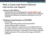 what is school wide positive behavior intervention and support