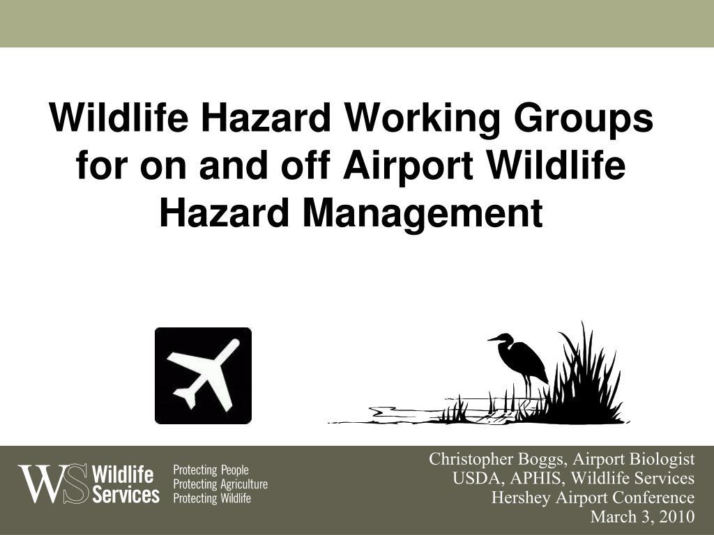 wildlife hazard working groups for on and off airport wildlife hazard management l.
